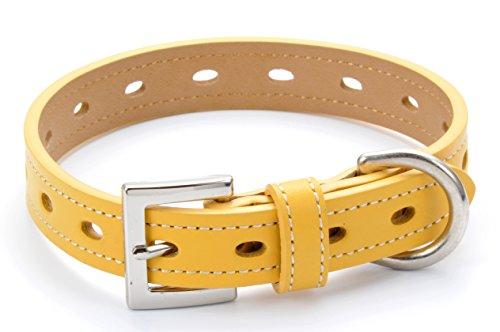 dog collar leather medium small fashion genuine leather real (XS:22~28cm, Yellow) (Dog Yellow Collar Leather)