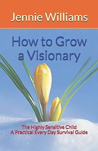 How to Grow a Visionary: The Highly Sensitive Child: A Practical Every Day Survival Guide