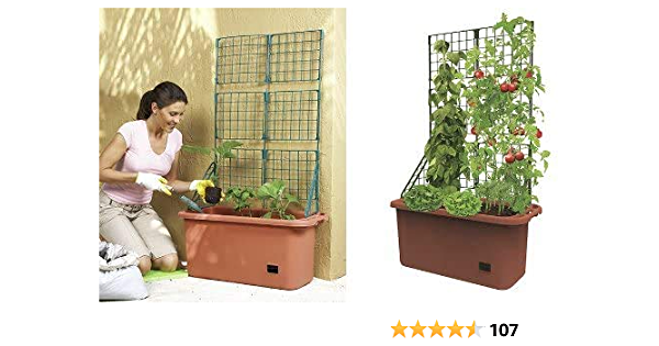 1PCS Garden Plant Climbing Trellis Mini Plant Pots Support Vegetables FlowersDIY