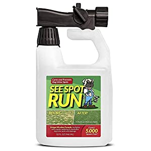 See Spot Run Lawn Protection - Dog Urine Grass Saver That Cures and Prevents Burn Spots. Pet Safe, All Natural Lawn Saver for Dogs. Safe to Use With Your Lawn Fertilizer. Made in USA Lawn Care Product