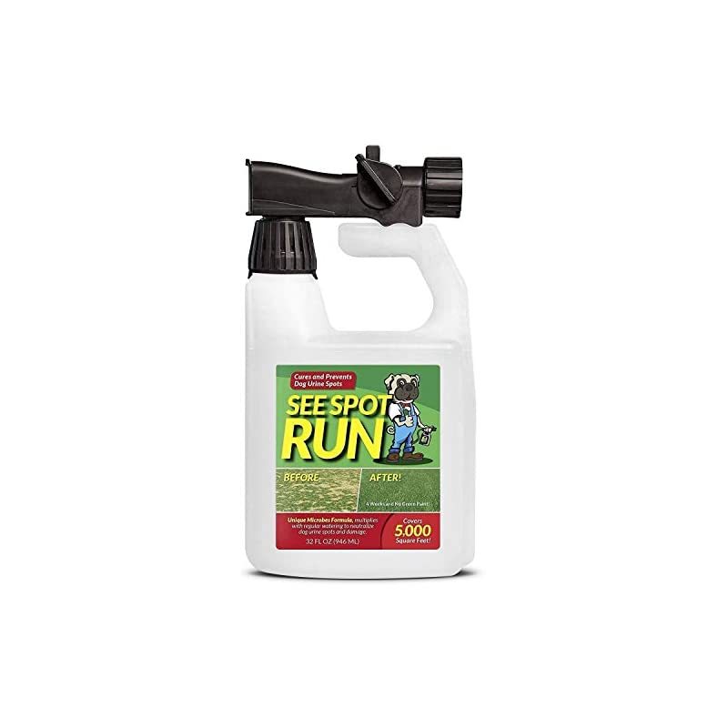 dog supplies online see spot run lawn protection   dog urine grass saver that cures and prevents burn spots. pet safe all natural lawn saver for dogs. safe to use with your lawn fertilizer   made in usa lawn care product