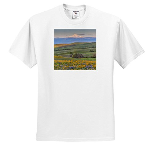 - 3dRose Danita Delimont - Flowers - Sunrise and MT. Hood With Spring Wildflowers, Washington - T-Shirts - Adult T-Shirt Large (TS_279648_3)