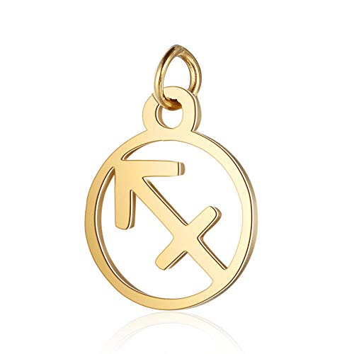 DanLingJewelry 5pcs 11mm 304 Stainless Steel Flat Round Sagittarius Zodiac Sign Charms 12 Constellation Pendants Charms Beads DIY for Necklace Bracelet Jewelry Making Hole:2.5mm Golden Color