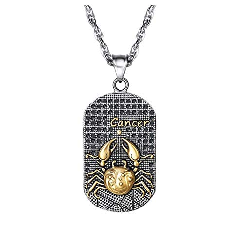 - ZODIACAA Zodiac Sign 3D Necklace Stainless Steel Star Sign Constellation Horoscope Pendant Necklace Great Gift Idea for Men and Women Color Antique Gold and Black (Cancer)
