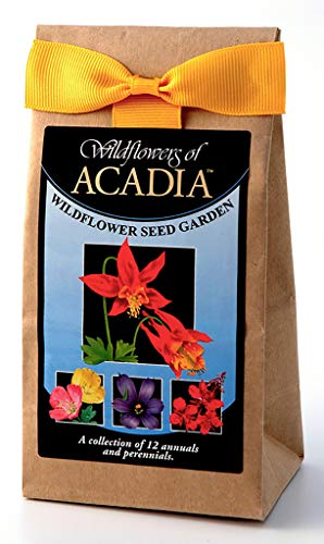 Acadia National Park Wildflowers - Seed Mix - a beautiful collection of twelve annuals and perennials - enjoy the natural beauty of Acadia flowers in your own home ()