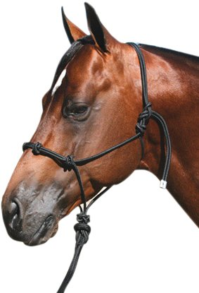 Professionals Choice Equine Nylon Clinician Halter (15-Feet, Lead Black) (Nylon Professionals Choice Halter)