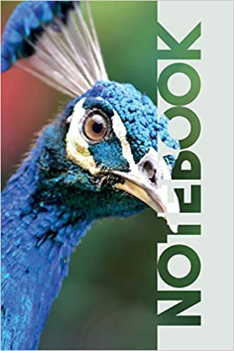 Buy Notebook: Peacock Sound Stylish Composition Book for