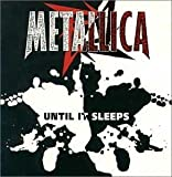 Until It Sleeps by Metallica