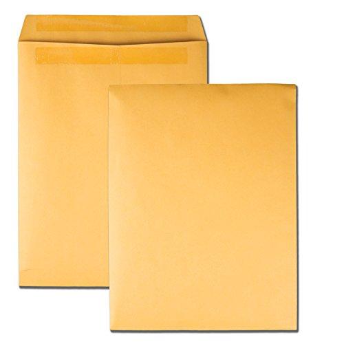 Quality Park Large Format/Catalog Envelopes, Redi-Seal, Brown Kraft, 10 x 13, 250 per Box, (QUA43762)