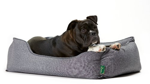 Hunter Boston 61429, Cama para perros, tamaño S (espacio exterior 60 x 50 x 20 cm/ interior cojín 52 x 42 cm), color gris: Amazon.es: Productos para ...