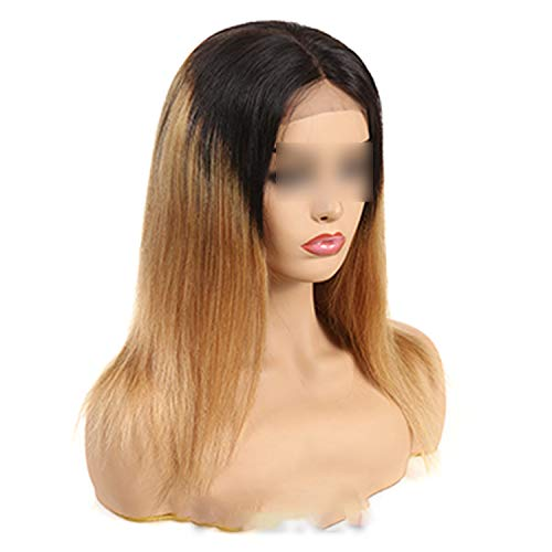 Carrie 1B/Burgundy Ombre Brazilian Straight Wig Black Red Remy Ombre Lace Front Human Hair Wigs For Women Middle Part,T1B/27,16Inches,250%