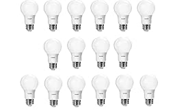 Philips 461160 40 Watt Equivalent Daylight A19 LED Light Bulb, 16-Pack