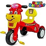 JoyRide Happy Birthday Baby Tricycle Ride-On with Music & Light (Red)