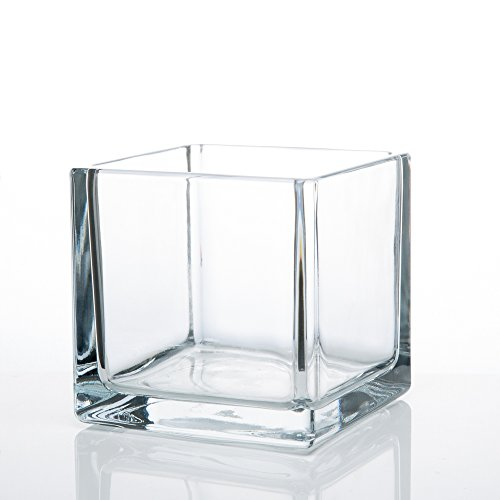 Richland Square Glass Cube Vase ()