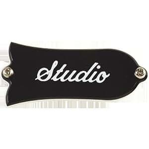 Gibson Gear Les Paul Studio - Placa cubre tornillo del tensor Truss Rod