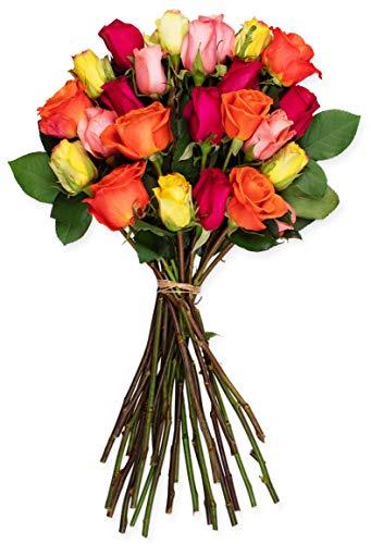 Benchmark Bouquets 2 Dozen Rainbow Roses, No Vase (Fresh Cut Flowers) (Online Flower Vase Purchase)