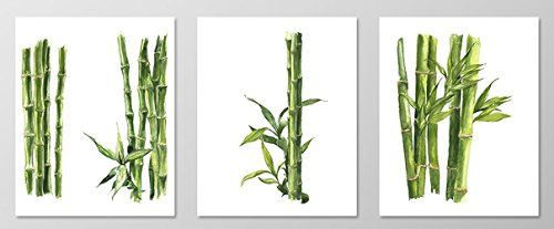 Merveilleux Bamboo Wall Art #A078   Set Of 3 Art Prints(8x10 ).Living