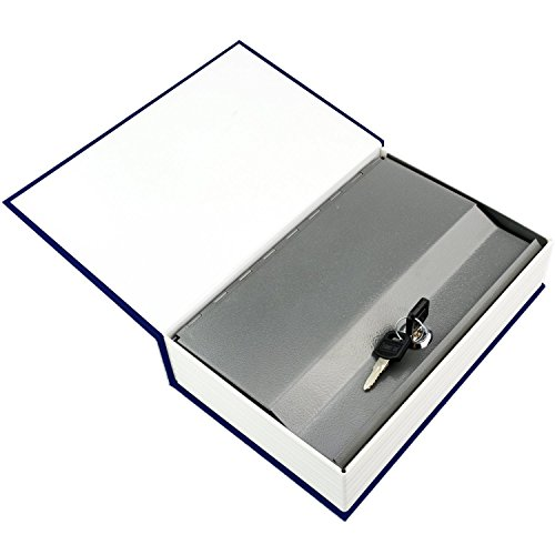 HENGSHENG Dictionary Secret Book Hidden Safe With Key Lock Book Safe Love Style Small Size 7.1x4.6x2.2 inches