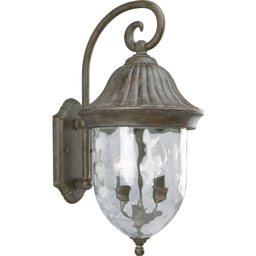 Progress Lighting P5829-87 2-Light Chain Hung Lantern with Optic Hammered Clear Glass, Fieldstone