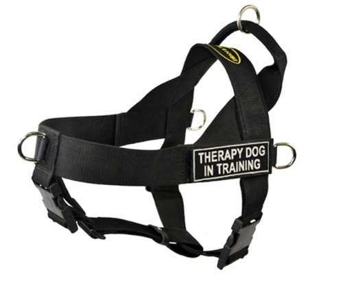 DT Universal No Pull Dog Harness, Therapy Dog In Training, Black, Small, Fits Girth Size: 24-Inch to 27-Inch, My Pet Supplies