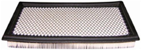 Hastings Mini (Hastings AF1270 Panel Air Filter Element)