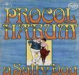 Procol Harum - A Salty Dog - LP vinyl