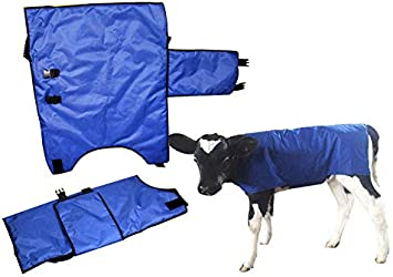 EBDS Calf Jacket,Calf Blanket With Belly Protection Design Wind and Water Proof Oxford Fabric Winter Warm Livestock Farm Animals Supplies