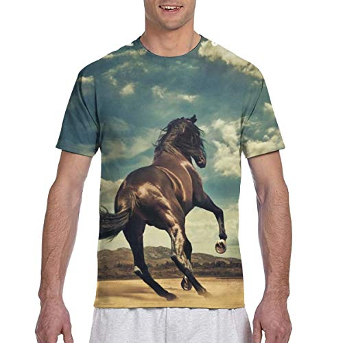 LANDONL Men's Bruce Springsteen Western Stars 3D Printed Short Sleeve Tshirts Black XL