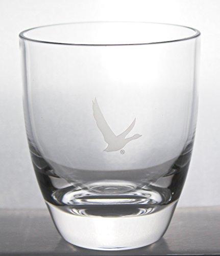 Grey Goose Acrylic Glasses Set Of 2 Buy Online In Uae
