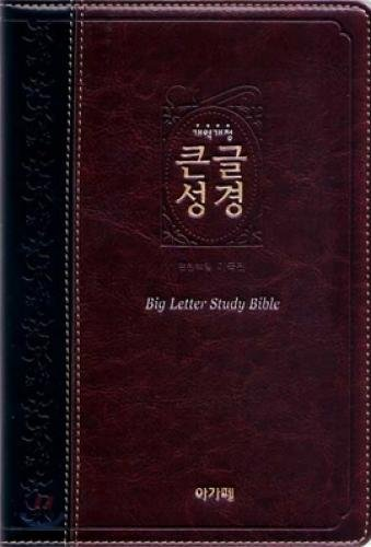 Big Letter Korean Bible (Large / index / two-tone black, brown) (15.3 * 22.5) (Korean Edition) pdf epub