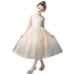 Long Sleeve Gradient Mesh Sequin Princess Dress