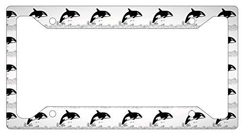 Animals Orca Graphics Desing Metal License Plate Frame, Car Tag Frame ()