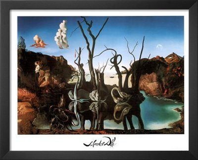 Reflecting Swans Elephants (Salvador Dali Swans Reflecting Elephants White Border Art Print Poster Framed Art Print 22 x 18in)