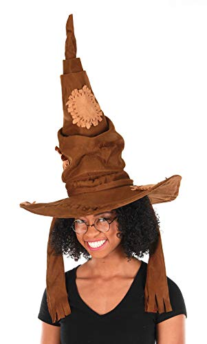 elope Harry Potter Wire Costume Glasses and Sorting Hat
