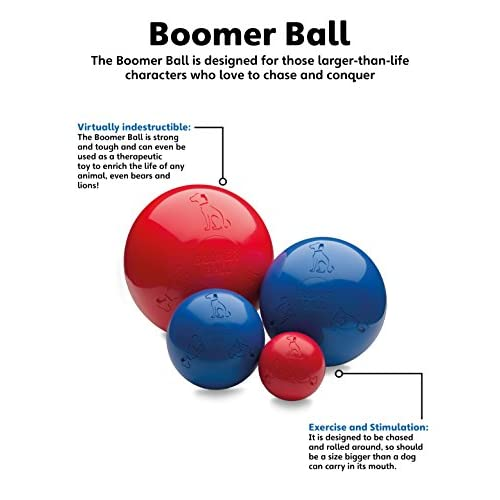 The Company of Animals Boomer Ball new