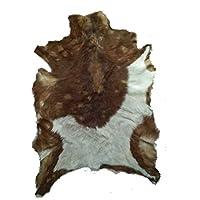 African Hide Rug Leather Hair On Natural Animal Art Egypt Multi color Goatskin