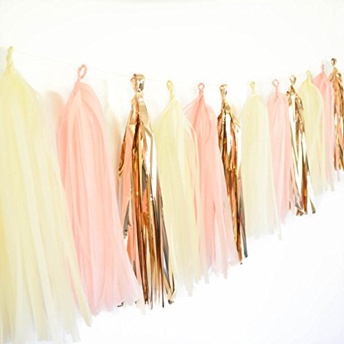 Twigs & Twirls DIY Tassel Garland Kit Rose Gold, Ivory, Pink Tissue Paper Banner, Makes 15 Tassels Assembly Required String Included Tissue Paper Garland with Metallic Tassels, Party (Garland Blush)
