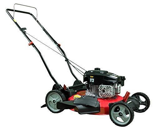 PowerSmart DB2321CR Gas Push
