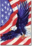 Cheap Liberty Eagle – 28″ x 40″ Toland Art Banner