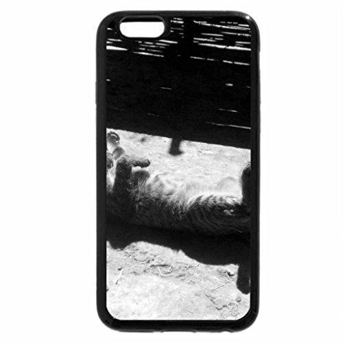 iPhone 6S Plus Case, iPhone 6 Plus Case (Black & White) - Basking In The Sun