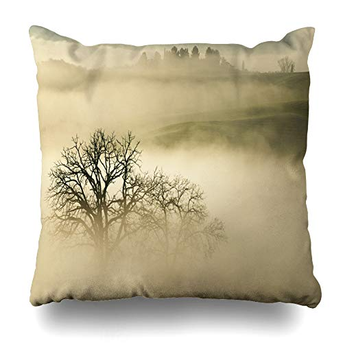 Ahawoso Throw Pillow Covers Cloudy Autumn Foggy Sunrise Tuscany Italy Vineyard Scenery Parks Agriculture Belvedera Calm Cloud Home Decor Zippered Pillowcase Square Size 18 x 18 Inches Cushion Case ()