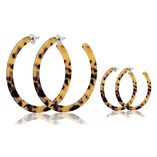 Dolovely 2 Pairs Round Leopard Hoop Earring Bohemia Acrylic Resin Circle Stud Earrings for Women (Two Round Earring)