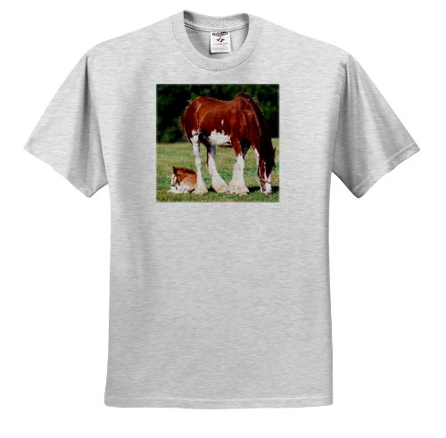 Florene Animals - Clydesdale Mare And Foal horses - T-Shirts - Adult Birch-Gray-T-Shirt 2XL - Foal T-shirt Adult