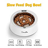 Domipet Dog Slow Feeder Bowl Pet Stainless Steel Bowl for Small Large Dogs Cats with Smart Weighing Display
