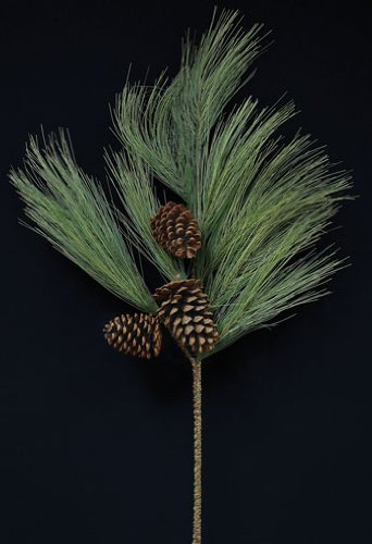 Giant Long Needle Pine Spray With Monterey Pine Cones Country Primitive Winter Floral Décor