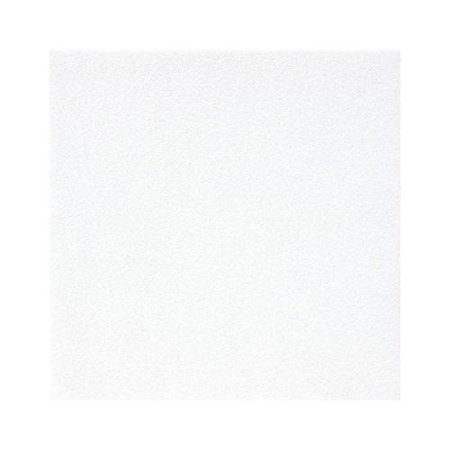 (業務用10セット) 銀鳥産業 フェルト 20cm角 10枚 No703 白 177-099 AV デジモノ パソコン 周辺機器 用紙 手作りキット top1-ds-1913173-ah [簡素パッケージ品] B0754GTZQX