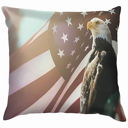 American Bald Eagle Flag Patriotism Animals Wildlife Cotton Linen Home Decorative Throw Pillow Case Cushion Cover for Sofa Couch 12X12 Inch