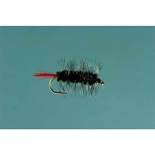 - Jackson Cardinal Flies Black Wooly Worm