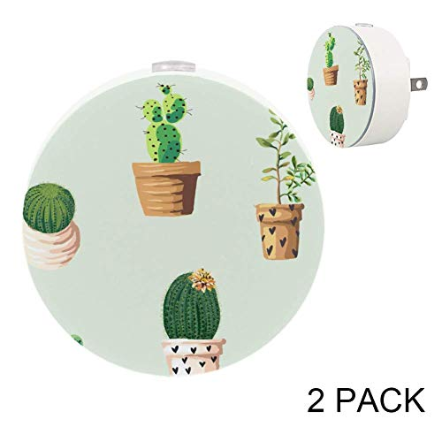 Dragon Sword Potted Plant Night Light for Kids,Dusk-to-Dawn Automatic Sensor Night Light(2 Pack),Plug-in LED Warm White ()
