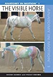 Anatomy in Motion 1: The Visible Horse